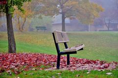 Autumn rest. Park benches among autumn leaves in foggy weather. Mount Prospect, Robert T Jackson Clearwater Park Royalty Free Stock Photos