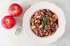 Rice pilaf with apples and cranberries against marble. Autumn rice pilaf with apples and cranberries in a vintage bowl against a marble background Royalty Free Stock Photos