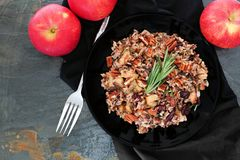 Autumn rice pilaf overhead scene against slate Royalty Free Stock Photos