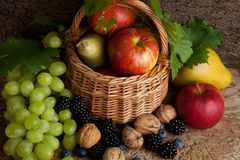 Autumn riches. Rich autumn fruits, berries and walnuts on a wooden board Royalty Free Stock Images