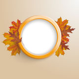 Autumn Ring Foliage PiAd. Ring with foliage on the brown background Stock Photo