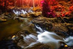 Autumn River Imágenes de archivo libres de regalías