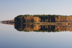 Autumn river. Gold forest reflection Royalty Free Stock Image