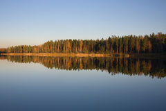 Autumn river. Gold forest reflection Stock Image