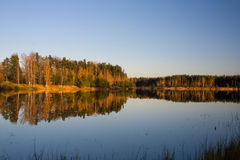 Autumn river. Gold forest reflection Stock Photography
