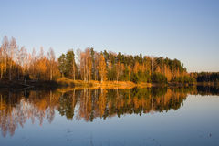 Autumn river. Gold forest reflection Royalty Free Stock Photography