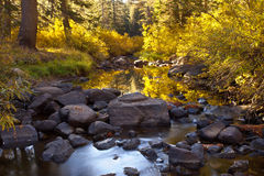 Autumn River. An autumn river in the Sierra Nevada stock images