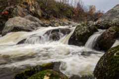 Autumn River Royaltyfri Fotografi