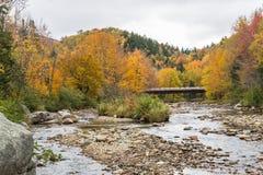 Autumn River Arkivfoton