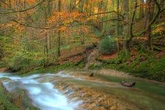 Autumn River Immagine Stock Libera da Diritti