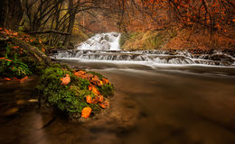 Autumn River Fotos de Stock Royalty Free