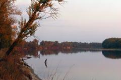Autumn River Lizenzfreies Stockfoto