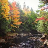 Autumn River Photos stock