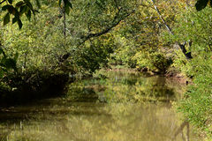 Autumn River Fotografie Stock Libere da Diritti
