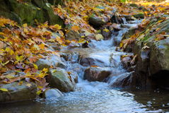 Autumn River Photographie stock