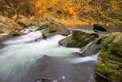 Autumn River Foto de archivo