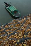 Autumn on river Royalty Free Stock Photo