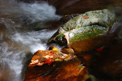 Autumn river. A river in the autumn with leaves and water flowing between rocks Stock Image
