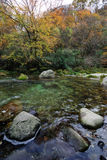 Autumn river. In a forest with colorful trees Stock Photo