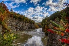 Autumn River Stock Foto's