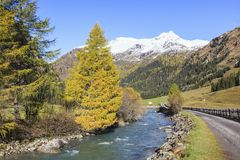 Autumn river Stock Photography