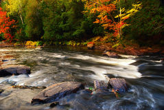 Autumn River Background. A rushing river with some green and colorful trees during the fall Royalty Free Stock Photography