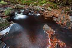 Autumn river in Belgium Stock Image