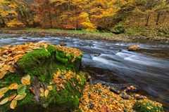Autumn river. With boulder and coloured trees and leaves in Peklo valley, Czech republic Royalty Free Stock Photo