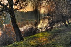 Autumn. On the river in eastern Croatia Stock Images