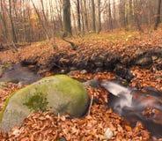 Autumn River Royalty Free Stock Photo