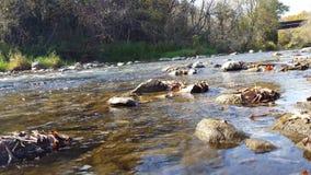 Autumn River Flowing With Bridge op de Achtergrond stock videobeelden