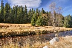 Autumn river Stock Photography