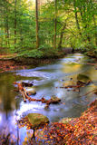 Autumn - river and forest royalty free stock images