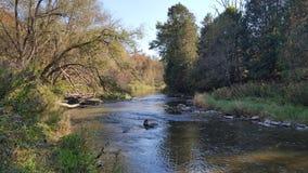 Autumn River i Nordamerika/Kanada arkivbilder