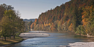 Autumn at the river Isar Stock Photography