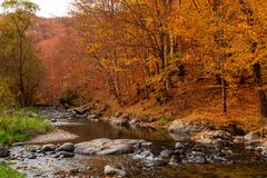 Autumn River Landscape Colors in aard stock foto's