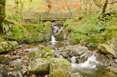 Autumn River. Autumn landscape of a river in Thirlmere, Cumbria. Lake District Stock Photo