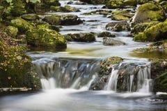 Autumn River Long Exposure, Belgium Royalty Free Stock Image