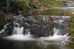 Autumn River Long Exposure, Belgium Royalty Free Stock Photo