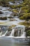 Autumn River Long Exposure, Belgium Royalty Free Stock Images