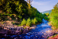 Autumn River Natural Landscape Royalty Free Stock Photography
