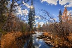 Autumn River Olha en Sibérie orientale Photos libres de droits
