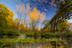 Autumn River Reflections Royalty Free Stock Photos