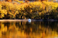 Autumn on River Stock Images