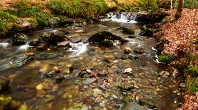 Autumn River Scene Immagini Stock Libere da Diritti