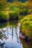Autumn river scene in Podporozhye Royalty Free Stock Photography