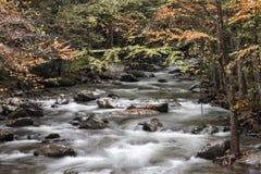Autumn River Scene Stock Photography