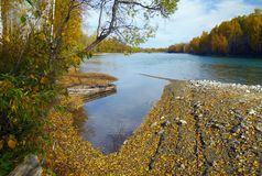 Autumn river scenics with boat Royalty Free Stock Images