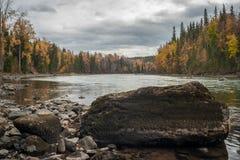 Autumn River - skog - vatten - vaggar royaltyfria foton