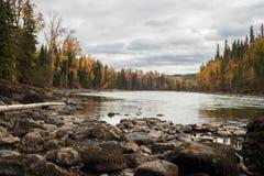 Autumn River - skog - vatten - vaggar - nedgångfärger arkivfoton